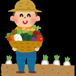 有機野菜の通販、農家直送でどこよりも一番の安心を手に入れよう
